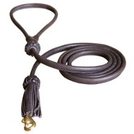 Stunning Leather Dogue de Bordeaux Leash