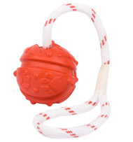 Fun Ball on a Rope for Dogue de Bordeaux (2 3/4 inch)