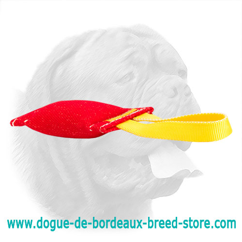 Equipped with durable nylon handle