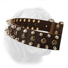 Extra Wide Dogue de Bordeaux Leather Collar with Buckle and Refined Triple Decoration