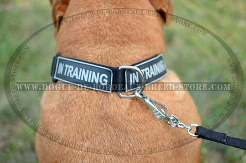 Easy to  Clean DDB Collar is Great for All Weather Activities