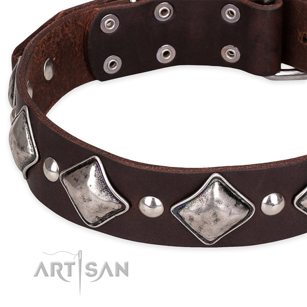 Snugly fitted leather dog collar with extra sturdy rust-proof set of hardware
