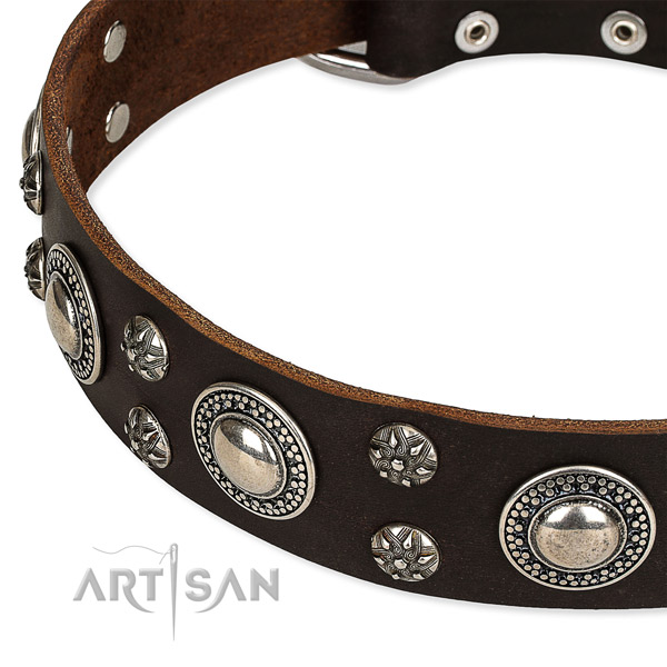 Adjustable leather dog collar with almost unbreakable chrome plated set of hardware