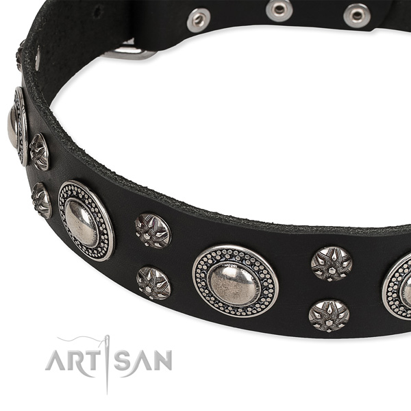 Adjustable leather dog collar with resistant to tear and wear brass plated buckle
