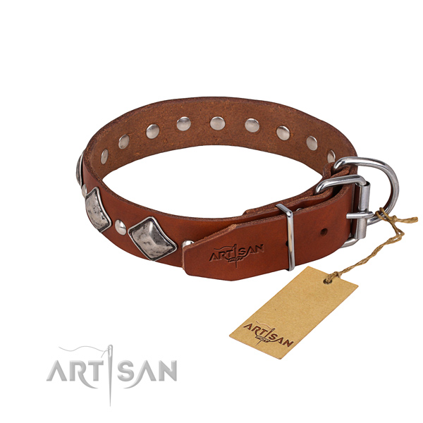 Durable leather dog collar with riveted details