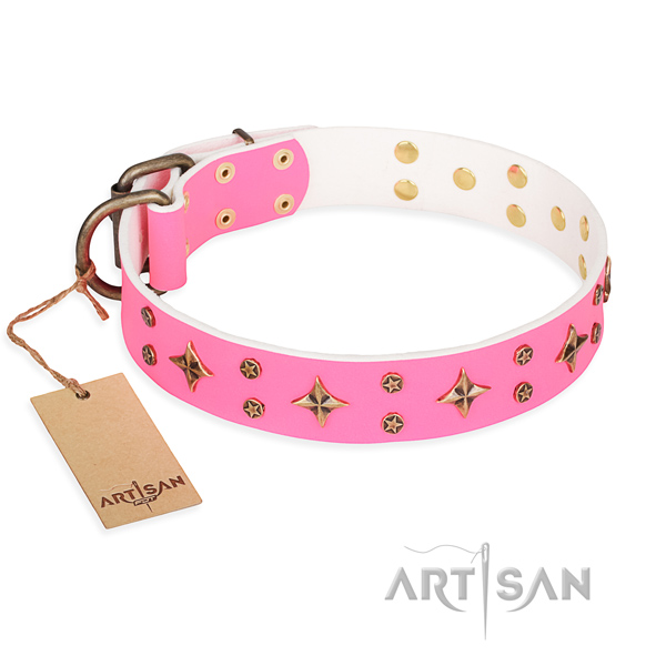 Full grain natural leather dog collar with inimitable embellishments