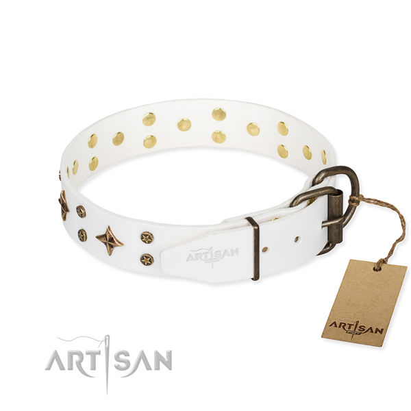 Everyday use genuine leather collar with adornments for your pet