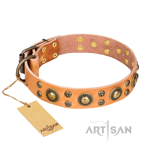 Trendy full grain genuine leather dog collar for daily walking