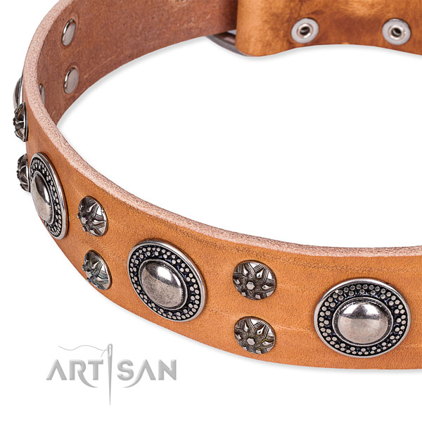 Daily walking natural genuine leather collar with durable buckle and D-ring