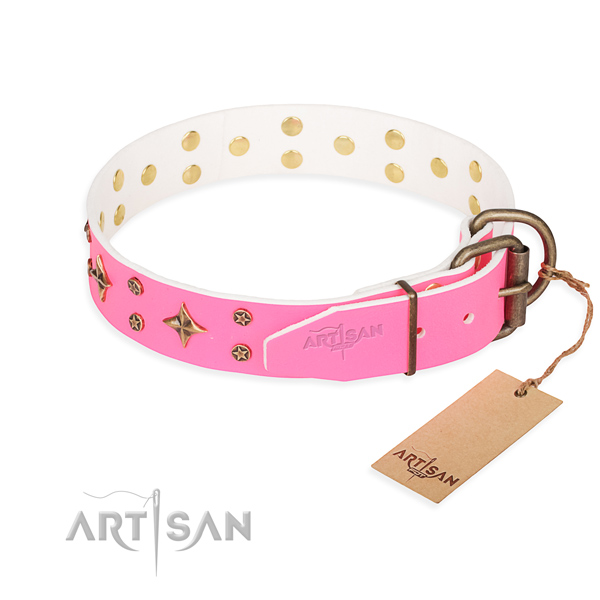 Walking full grain genuine leather collar with embellishments for your pet