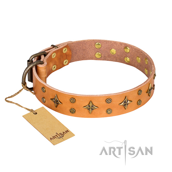 Impressive full grain genuine leather dog collar for stylish walking