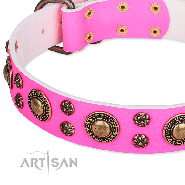 Natural genuine leather dog collar with remarkable embellishments