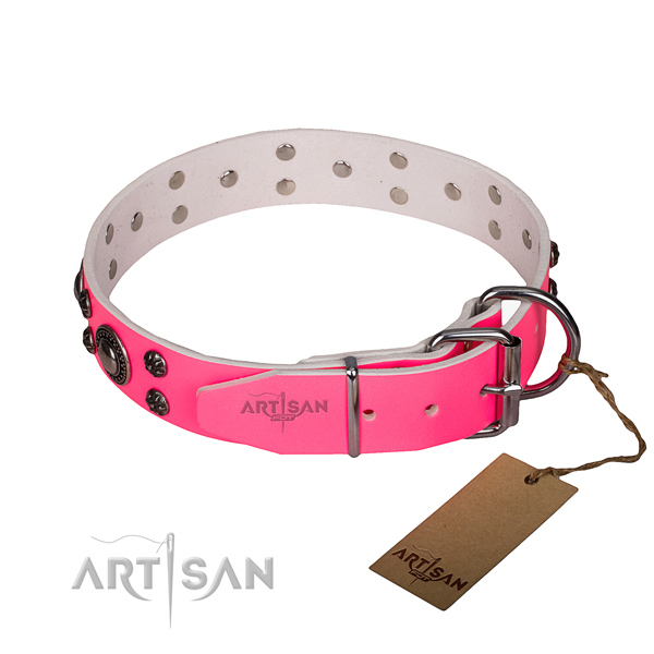 Stylish walking full grain natural leather collar with strong buckle and D-ring