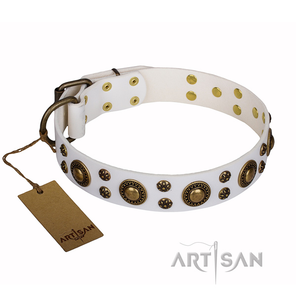 Everyday use leather collar with decorations for your pet