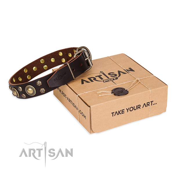 Stylish design full grain leather dog collar for daily walking