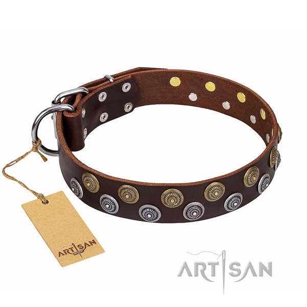 Everyday use natural genuine leather collar with embellishments for your doggie