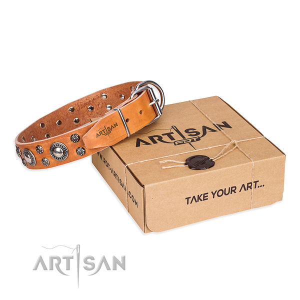 Awesome full grain genuine leather dog collar for stylish walking