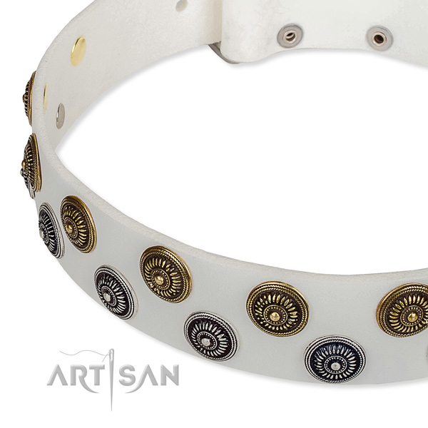 Full grain leather dog collar with impressive decorations
