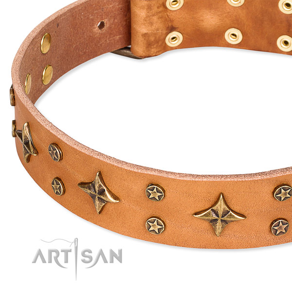 Full grain genuine leather dog collar with extraordinary decorations