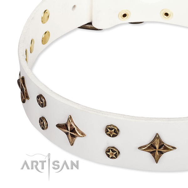 Full grain natural leather dog collar with fashionable embellishments