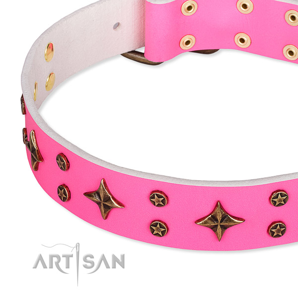 Full grain natural leather dog collar with significant adornments