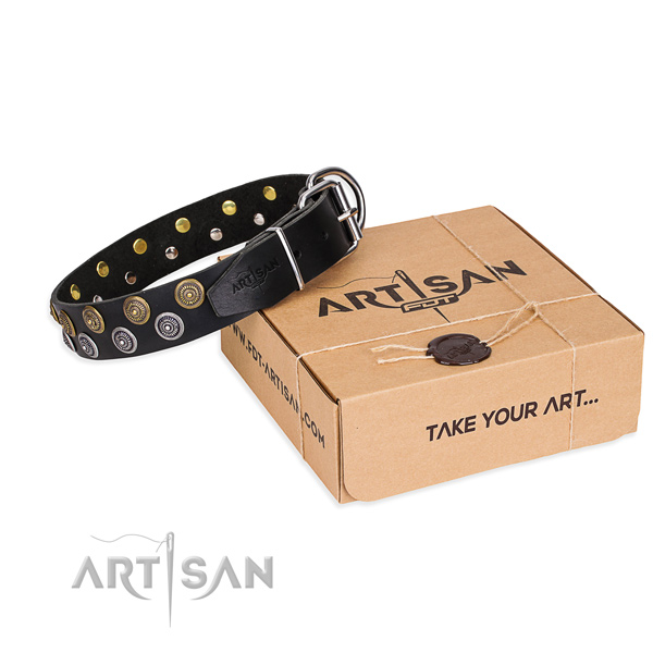 Full grain leather dog collar with embellishments for daily use