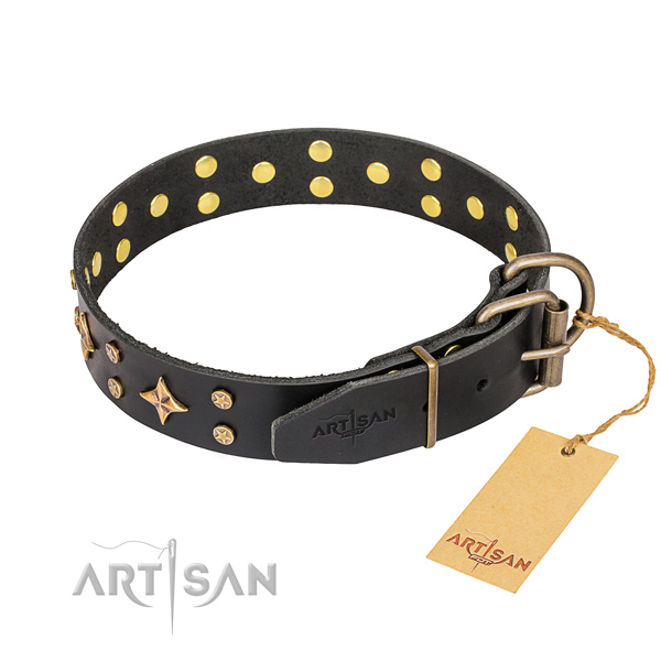 Everyday use leather collar with adornments for your four-legged friend