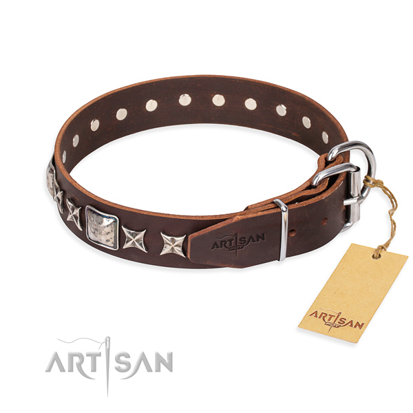 Walking leather collar with studs for your four-legged friend