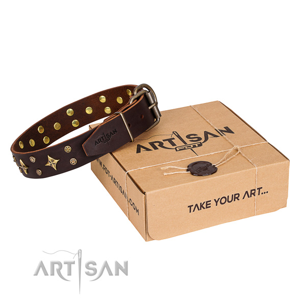 Studded natural genuine leather dog collar for stylish walks