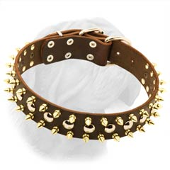 Quality French Mastiff Leather Collar with Spikes and Studs