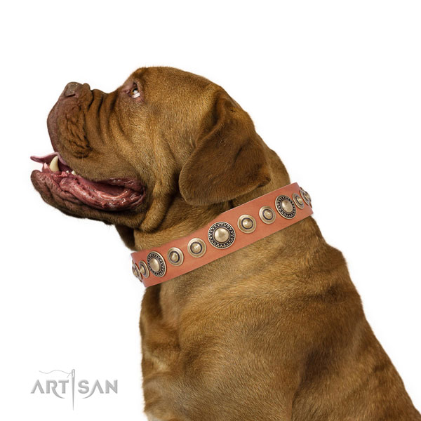 Corrosion proof buckle and D-ring on natural leather dog collar for stylish walking