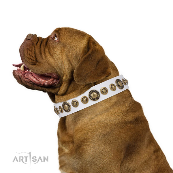 Corrosion proof buckle and D-ring on natural leather dog collar for everyday use