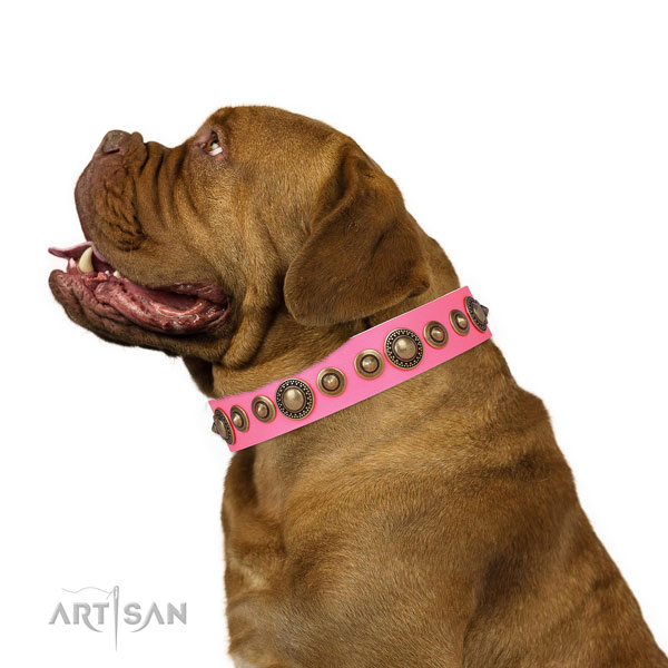 Rust-proof buckle and D-ring on genuine leather dog collar for everyday walking