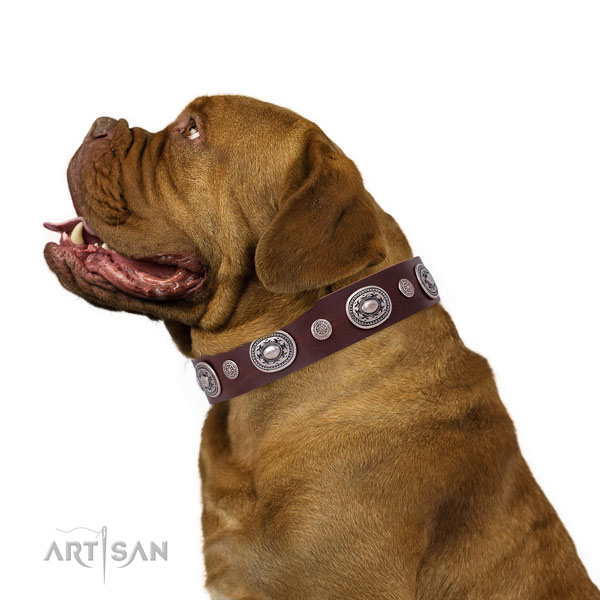 Corrosion proof buckle and D-ring on full grain leather dog collar for daily walking