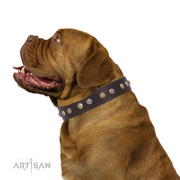 Natural leather dog collar with reliable buckle and D-ring for comfy wearing