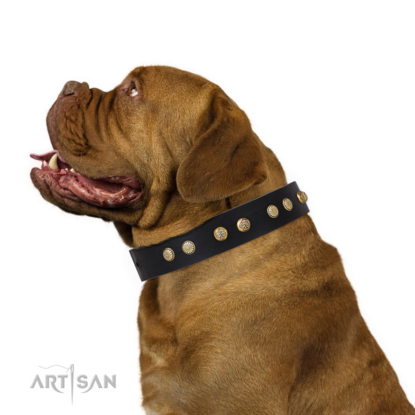 Inimitable adornments on fancy walking genuine leather dog collar