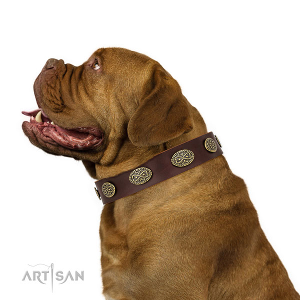 Top notch embellishments on comfortable wearing full grain natural leather dog collar
