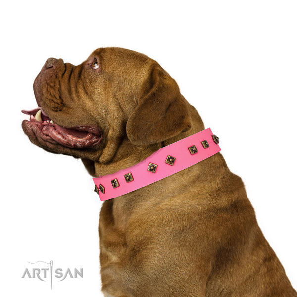 Extraordinary adornments on handy use dog collar