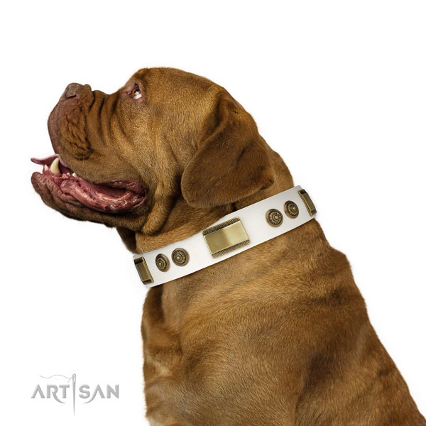 Top rate fancy walking dog collar of genuine leather