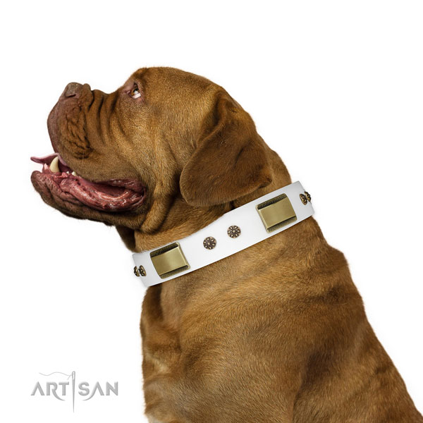 Easy wearing dog collar of leather with stylish adornments