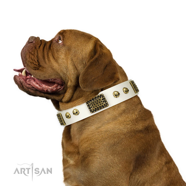Rust resistant hardware on leather dog collar for handy use