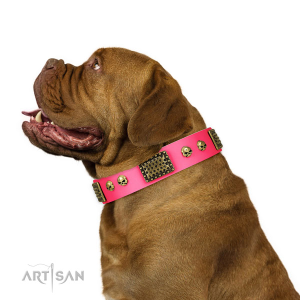 Rust resistant hardware on leather dog collar for fancy walking