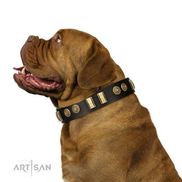 Durable fittings on natural leather dog collar for comfortable wearing