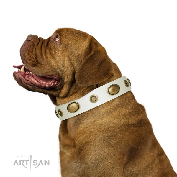 Comfortable wearing dog collar of leather with fashionable studs
