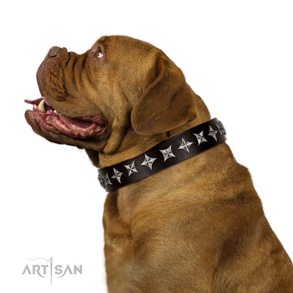 Comfy wearing adorned dog collar of quality natural leather