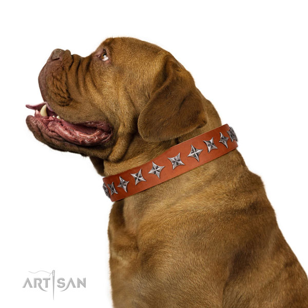 Durable full grain genuine leather dog collar with designer embellishments