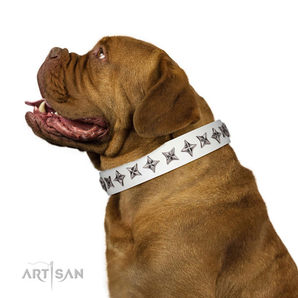 Top quality full grain leather dog collar with stunning decorations
