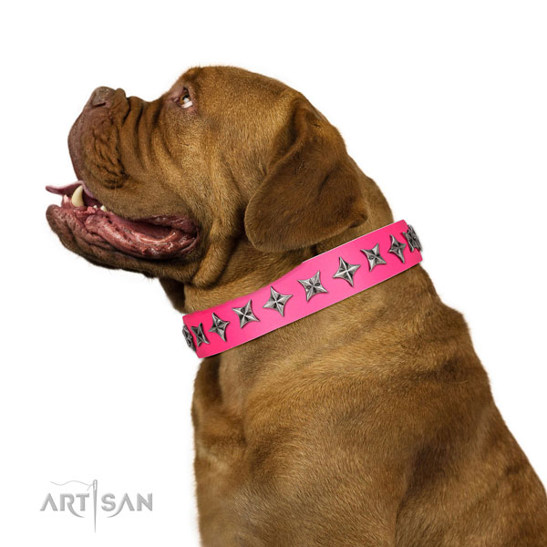 Top quality genuine leather dog collar with impressive studs