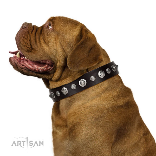 Durable leather dog collar with unique embellishments