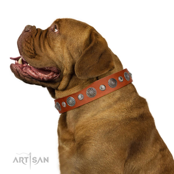 Easy adjustable full grain leather dog collar with corrosion resistant traditional buckle